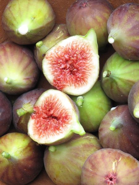 figsclose