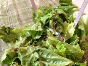 saladfrenchtricktoo450