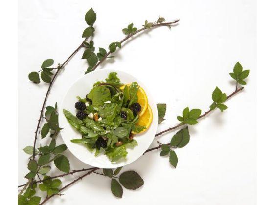 blackberrysaladvinesKoon