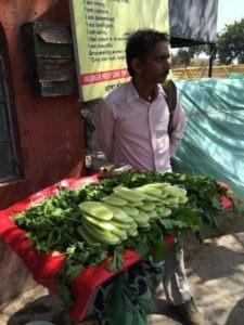 indiacucumbers450