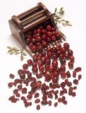 cranberriesloose