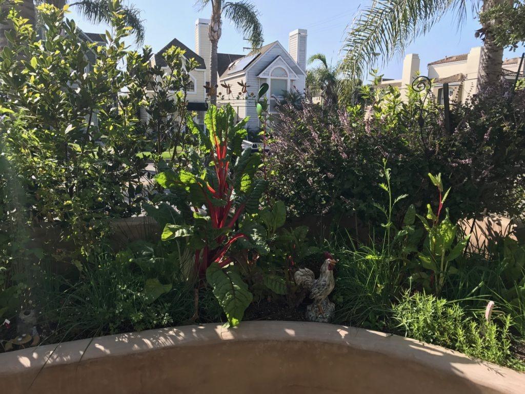garden2017